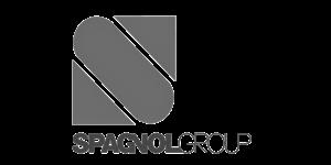 home_logo_spagnol group